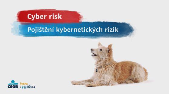 CSOBP CYBER RISK
